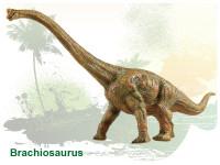 Dinosaurus - Brachiosaurus 30 cm