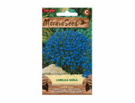 Lobelka seed small low, blue - VÝPREDAJ