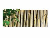 Rohož EXTRA trstina džungľový 1,5x5m