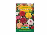 Pryskyřník – Ranunculus Asiatikus - 8ks Gardenia