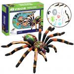 4D Model - Pavouk Tarantule