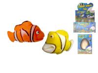 Morské zvieratká liahnuce sa a rastúce - mix variantov či farieb