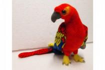 Papoušek plyš 55cm