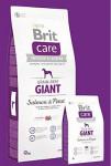 Brit Care Dog Grain-free Giant Salmon & Potato 12kg