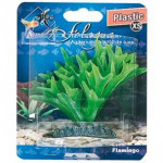 Rastlina plast Fiji Flamingo 9 cm