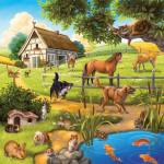 Domácí zvířata 3 x 49d