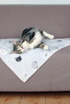 Deka pre mačky MIMI sivá s mačacími hlavami 70x50cm TR