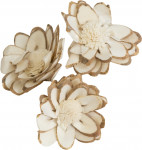 Dekorácie - Sola Chips Star Sunflower 6 cm - 3 ks