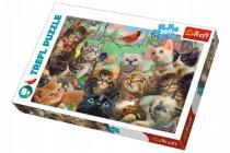 Puzzle Mačky 260 dielikov 60x40cm
