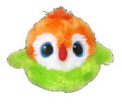 Yoo Hoo papagáj Agapornis