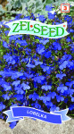 Seva Zelseed Lobelka - modrá 0,18g