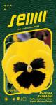 Semo Fialka sirôtka - žltá s okom 0,3g