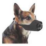 Náhubok fixačné pes Henry Schein č.4 1ks