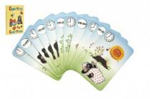 Černý Petr Krtek 4- společenská hra - karty v papírové krabičce 6x9cm