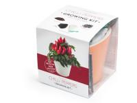 Vypestujte si jalapeňo, samozavlažovací kvetináč oranžový 10x10 cm, Domestic
