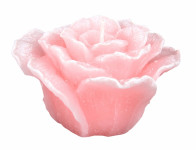 Sviečka RŮŽE ELIZABETH valentínska matná 11x7cm