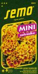 Semo Aksamitník rozkladitý - Safari Yellow Fire 30s - série Mini