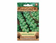 Seeds of Brussels sprouts CASIOPEA 62101 - VÝPREDAJ