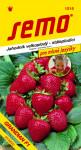 Semo Jahodník veľkoplodá - Grandian F1 12s - séria Pre maškrtné jazýčky