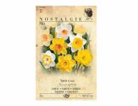Narcis zahradní, plnokvětý, směs 5ks
