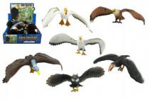 Vták plast 30cm - mix variantov či farieb
