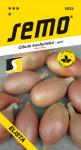 Semo Cibuľa jarná - Elista žltá, šalátová 1,5g