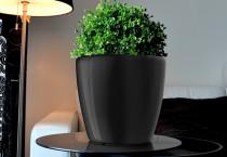 Samozavlažovací kvetináč GreenSun AQUAS priemer 22 cm, výška 21 cm, čierny