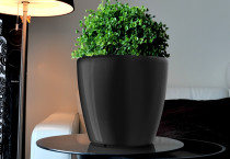 Samozavlažovací květináč GreenSun AQUAS průměr 22 cm, výška 21 cm, černý
