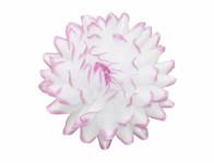 Květ voskový JIŘINA DEKOR bílý a lila 13cm