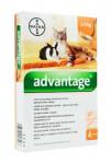 Advantage 40 10% 4x0,4ml pre malé mačky a králiky