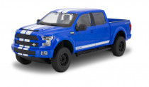 RC auto Ford Shelby F-150 1:16