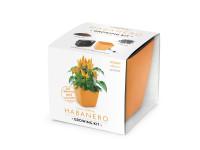 Vypestujte si Habanero, darčeková sada sa samozavlažovacím kvetináčom, ORANŽOVÝ 13x13 CM, Domestic