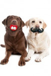 Hračka pes Fúzy / Pusa guma 7,5x13,5x5cm KAR