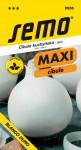 Semo Cibuľa jarná - Blanco duro biela 1g - séria Maxi