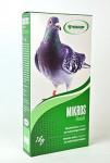 Mikros Holub plv 1kg krabička