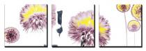 Obrazy Orchid - VÝPREDAJ