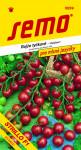 Semo Rajčiak kolíkový čerešňový - Strillo F1 12s - séria Pro mlsné jazýčky