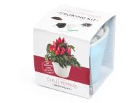Vypěstuj si jalapeňo, samozavlažovací květináč modrý 10x10 cm, Domestico
