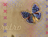 Balicí papír 100 x 70 cm 2 ks, RETRO-motýl, DITIPO