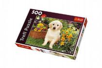 Puzzle Labrador v zahradě 500 dílků 48x34cm