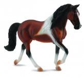 Tennessee Walking Horse žrebec hnedák