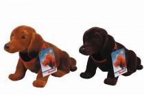 Pes s kývacou hlavou, 27cm, 2sort - mix variantov či farieb
