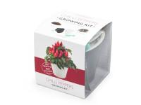 Vypestujte si jalapeňo, samozavlažovací kvetináč čierny 10x10 cm, Domestic