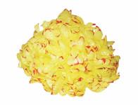 Kvet voskový Chryzantéma žlto červený 14cm