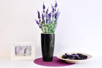 Vypestuj si levanduľu, čierny kvetináč, GreenSun