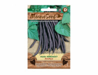 Seed Bean bush AMETHYST, violet 68231 - VÝPREDAJ