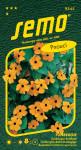 Semo Čiernooká Zuzana (Tunbergia) - oranžová s okom popínavá 1g
