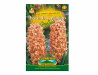 Hyacint zahradní GIPSY QUEEN 3ks