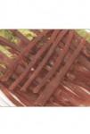 Pochoutka REDA Kachní proužky měkké 500g