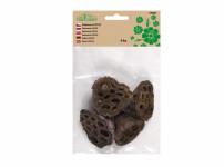 Dekorácie sušiny LOTOS prírodné 4-6 cm 4ks